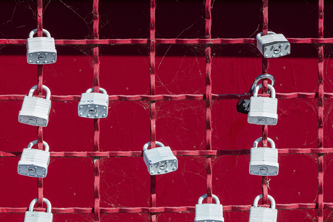 a group of white padlocks on a red iron gate